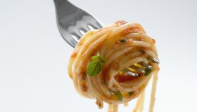 Spaghetti with sauce wound around fork, close-up, studio shot